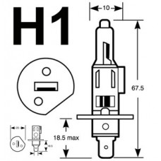 H1 HEADLIGHT - PAIR - 12V 55W